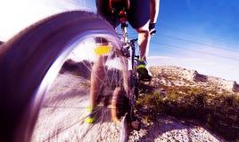 cykla det grunda cykla perspektiv för berg för händer för skogen för fokusen för cyklistdjupfältet Sport och sunt liv Royaltyfri Fotografi