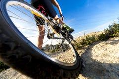 cykla det grunda cykla perspektiv för berg för händer för skogen för fokusen för cyklistdjupfältet Sport och sunt liv Royaltyfria Bilder