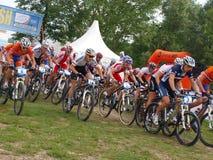 cykla dohnany europeisk berguec för mästerskap Royaltyfri Fotografi