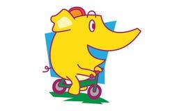 Cykla för elefant Arkivfoton