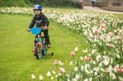 cykla först Royaltyfria Bilder