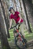 Cykla i skogen Arkivbilder