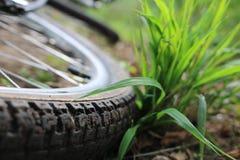 cykla kvinna för closeupskogmountainbike arkivfoton