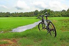 Cykla längs bygd av Goa Indien arkivbilder