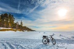 Cykla på isen av det Ob havet Västra Siberia Arkivfoto