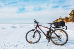 Cykla på isen av det Ob havet Västra Siberia Arkivbild