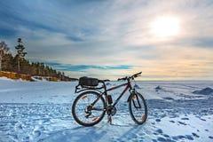 Cykla på isen av det Ob havet Västra Siberia Royaltyfri Bild