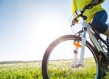 Cykla på sommar royaltyfria bilder