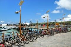 Cykla parkering på stranden i Puerto Ayora, Santa Cruz Is royaltyfri bild