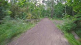 Cykla POV i parkera efter en våldsam storm arkivfilmer