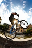 cykla ryttaren arkivbild