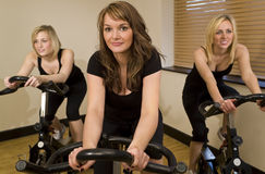 cykla trio Arkivbild