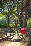 Cykla turismcykeln i Spanien med paniers Fotografering för Bildbyråer
