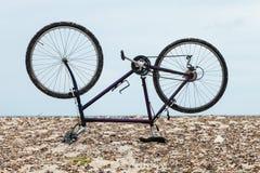 Cykla uppochnervänt på stranden, ingen inom Fotografering för Bildbyråer