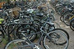 cyklar cambridge Royaltyfria Bilder