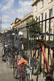 cyklar den cambridge deltagaren Royaltyfri Fotografi