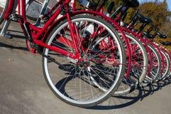 Cyklar för hyra (hösten 2013) Royaltyfria Foton