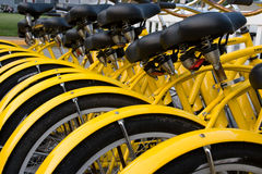 cyklar hyra Fotografering för Bildbyråer