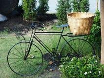 Cyklar i den utomhus- parkera Arkivfoto