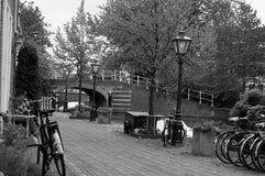 Cyklar i Leiden, Nederländerna Arkivbild