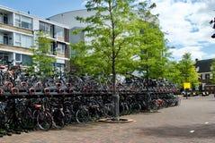 Cyklar i Nederländerna Royaltyfria Bilder