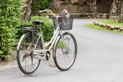 Cyklar i parkera arkivbild