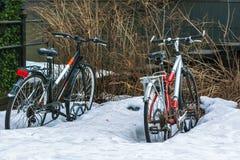 cyklar i snowen royaltyfria bilder