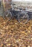 Cyklar och höstsidor Bruges Royaltyfria Foton