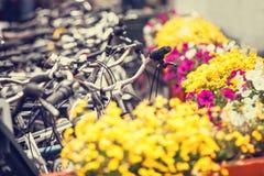 Cyklar på parkering och blommor Royaltyfria Bilder