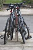 cyklar parar säkrat fotografering för bildbyråer
