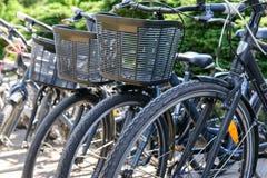 Cyklar parkeras Royaltyfri Foto