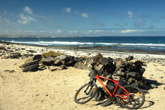 Cyklar som ligger på kusten Arkivfoto