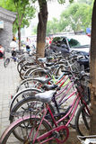 cyklar som parkerar mycket Arkivfoto