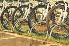 cyklar som parkerar white Royaltyfri Fotografi