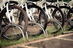 cyklar som parkerar white Royaltyfri Bild