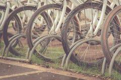 cyklar som parkerar white Fotografering för Bildbyråer