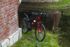 Cyklar sportar på ett grönt gräs nära en stadssjö Royaltyfria Bilder