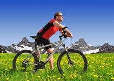 Cyklist i alpsna Arkivbild