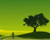 Cyklist i en grön gryning Royaltyfri Bild