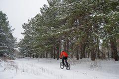 Cyklist i röd ridningmountainbike i den härliga vintern Forest Extreme Sport och Enduro som cyklar begrepp Fotografering för Bildbyråer