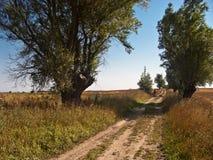 Cyklist nära kulleöverkant Arkivbild