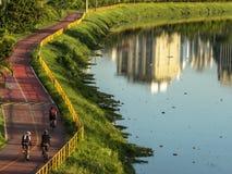 Cyklist på cykelgränd nära av den Pinheiros floden, västra sida av Sao Paulo royaltyfri foto
