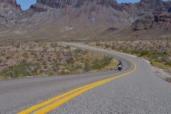 Cyklist på den Route 66 Oatman vägen royaltyfri fotografi