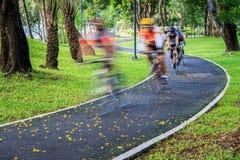 Cyklist på hastighet på cykelvägen i parkera Royaltyfri Bild