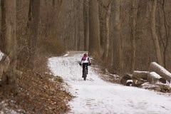Cyklist på skogsmarkslinga royaltyfri foto