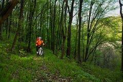 Cyklist på skogvägen Royaltyfria Foton