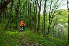 Cyklist på skogvägen Royaltyfri Fotografi
