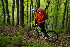 Cyklist på skogvägen Arkivfoto