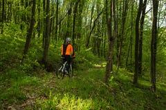 Cyklist på skogvägen Arkivfoton