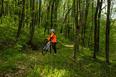 Cyklist på skogvägen Royaltyfri Foto
